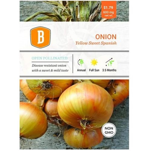Bentley Onion - Yellow Sweet Spanish Seed