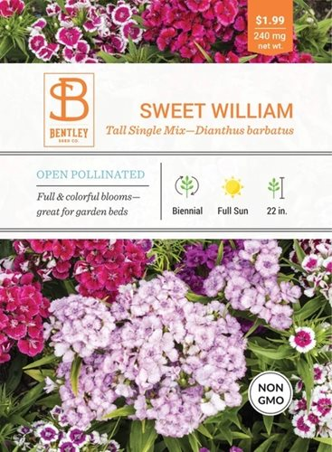 Bentley Sweet William Tall Single Mix Dianthus Barbatus Seed